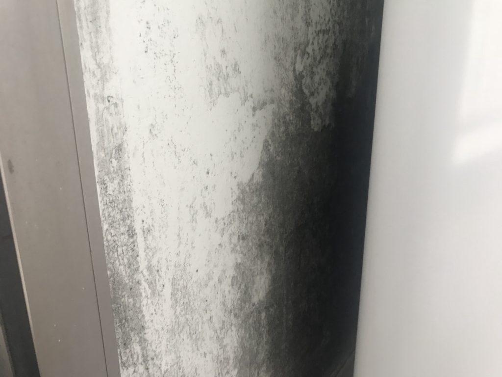 洗濯機置き場 カビ撃退